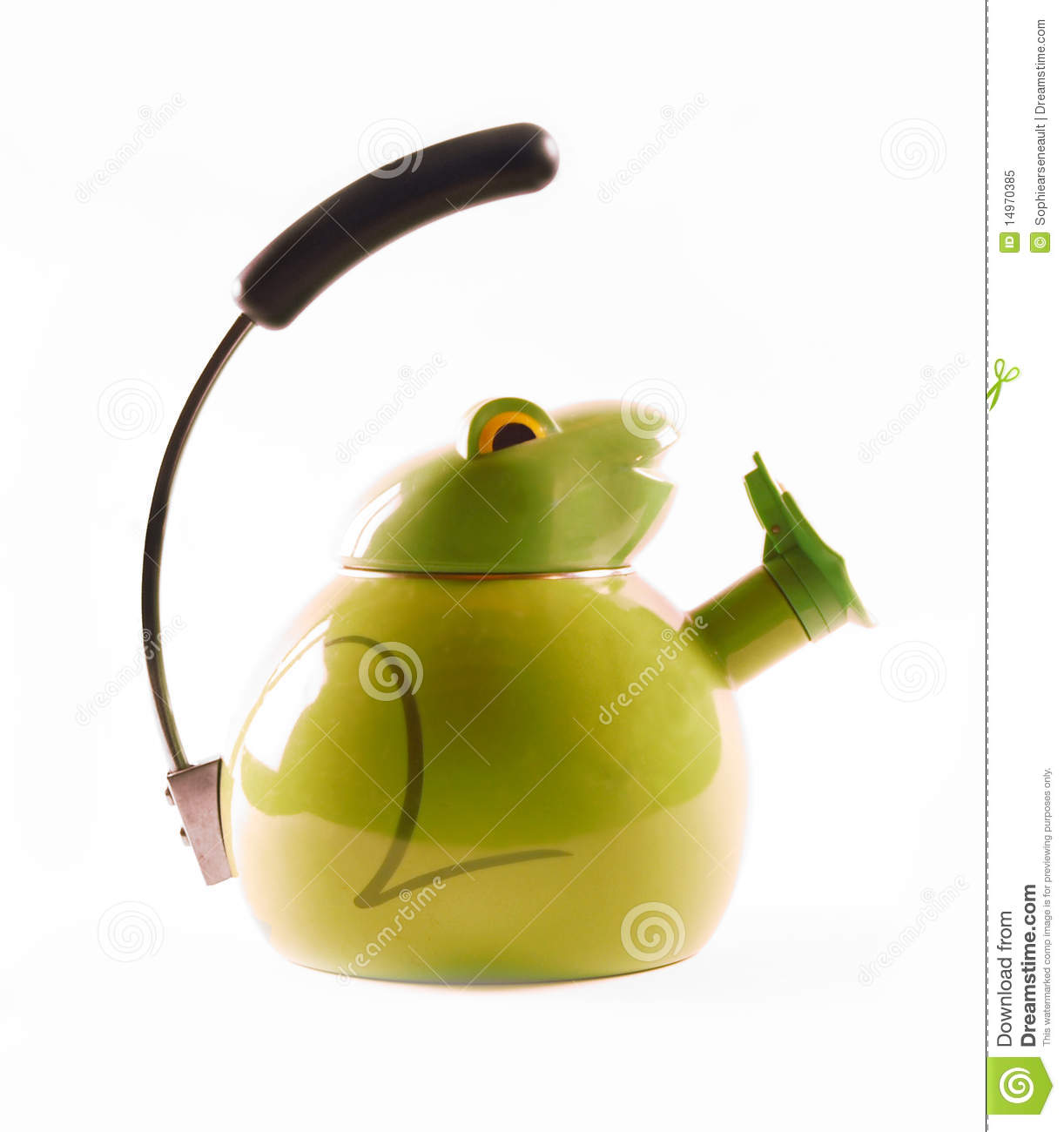 Green kettle frog