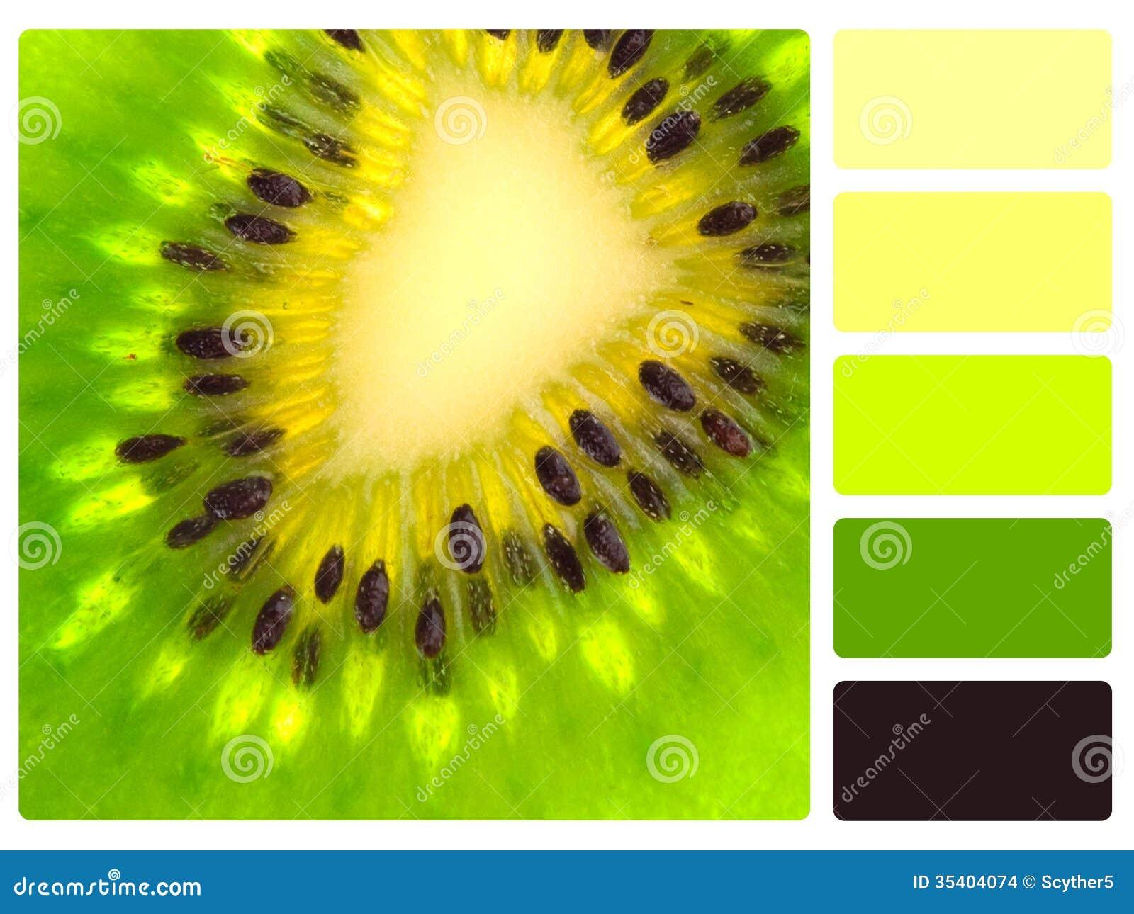 Color Palette Nature