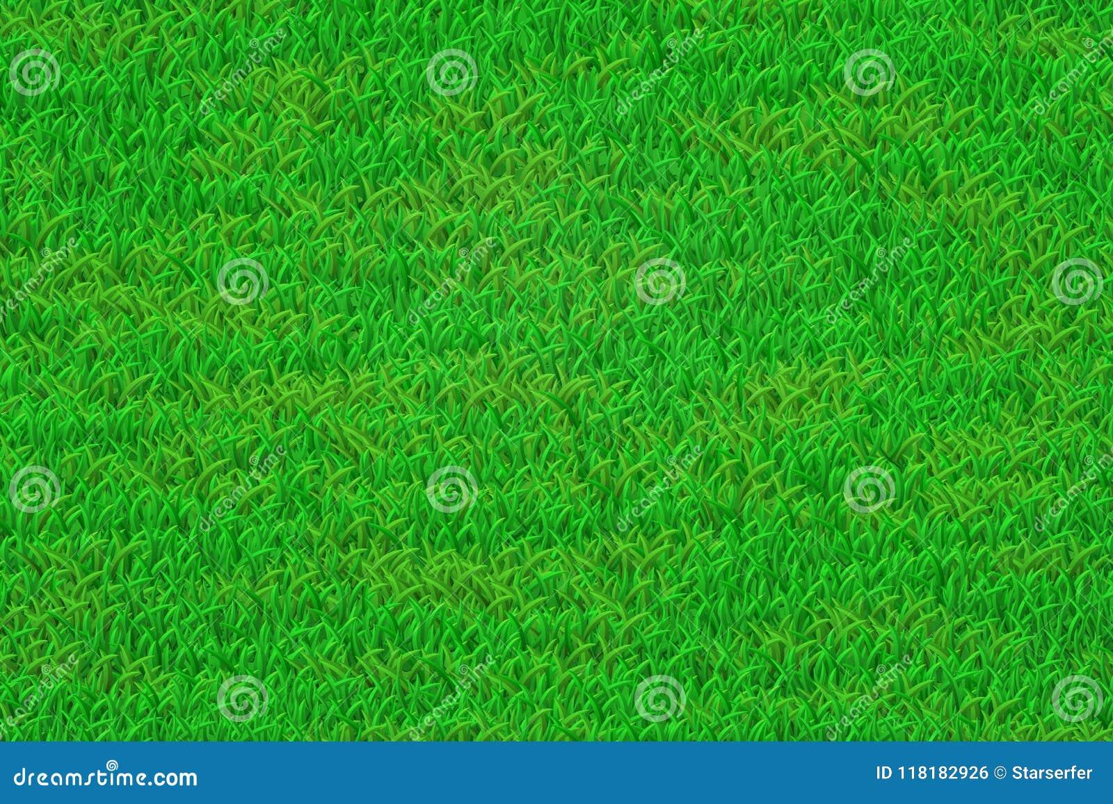 Green grass lawn background
