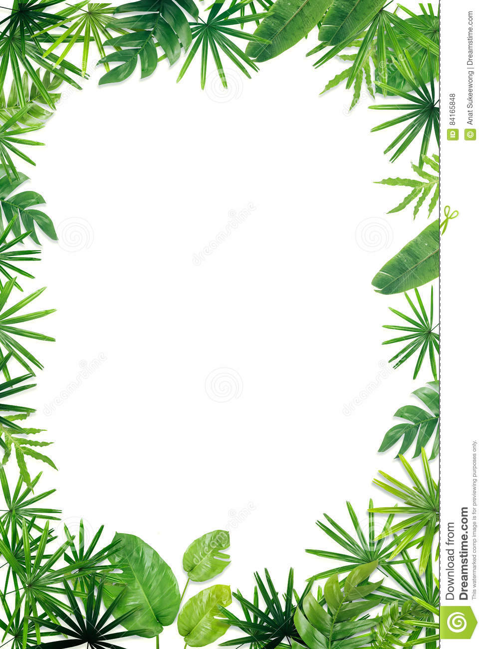 green leaf border background stock photo