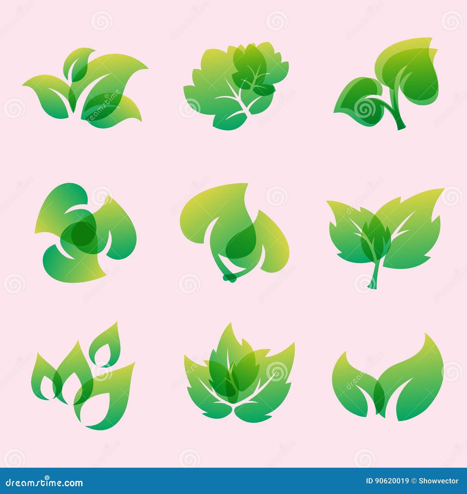 Green Leaf Eco Design Friendly Nature Elegance Symbol And