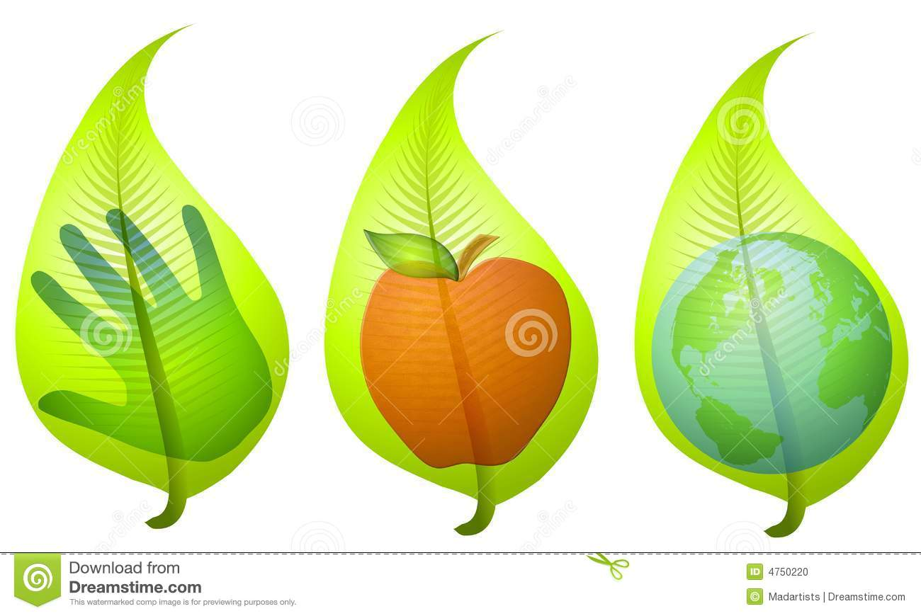 An illustration featuring your choice of 3 leaf graphics each with an ...