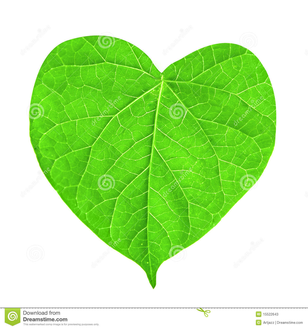 Green Leaf In Shape Of Heart Stock Image - Image of garden