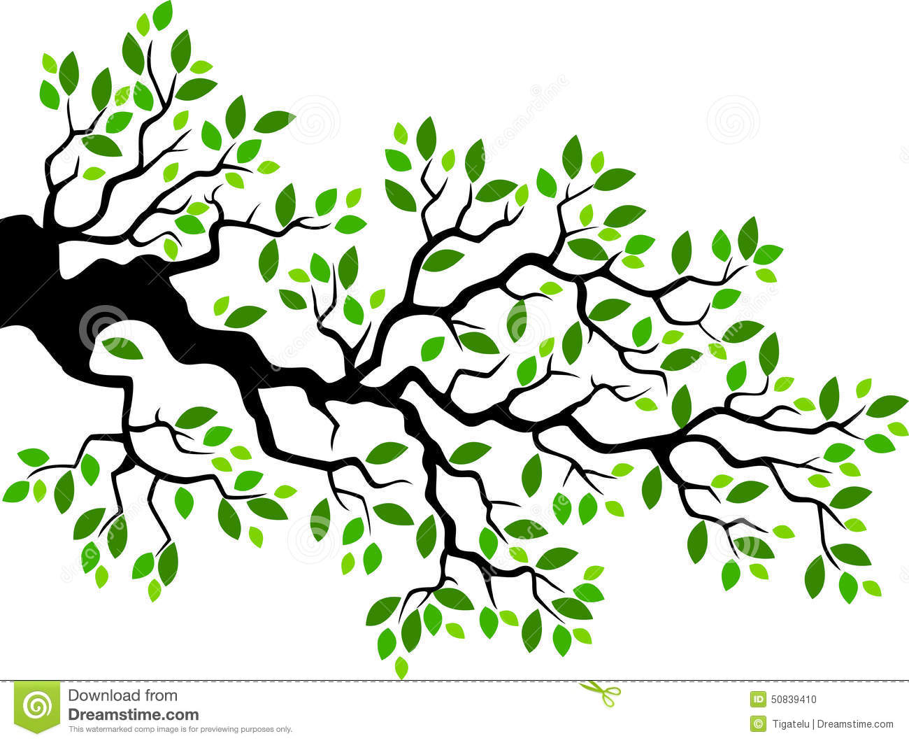 Green Leaf Tree Branch Cartoon Stock Vector - Image: 50839410 Cartoon Fall Tree With Branches