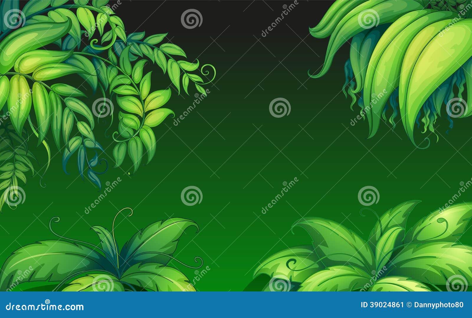 Green leafy plants stock vector image 39024861 - Leafy houseplants ...
