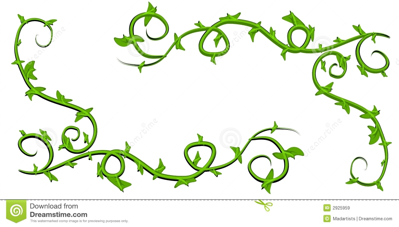 green leafy vines clip art stock illustration illustration of rh dreamstime com free vine clipart images free vine clipart images