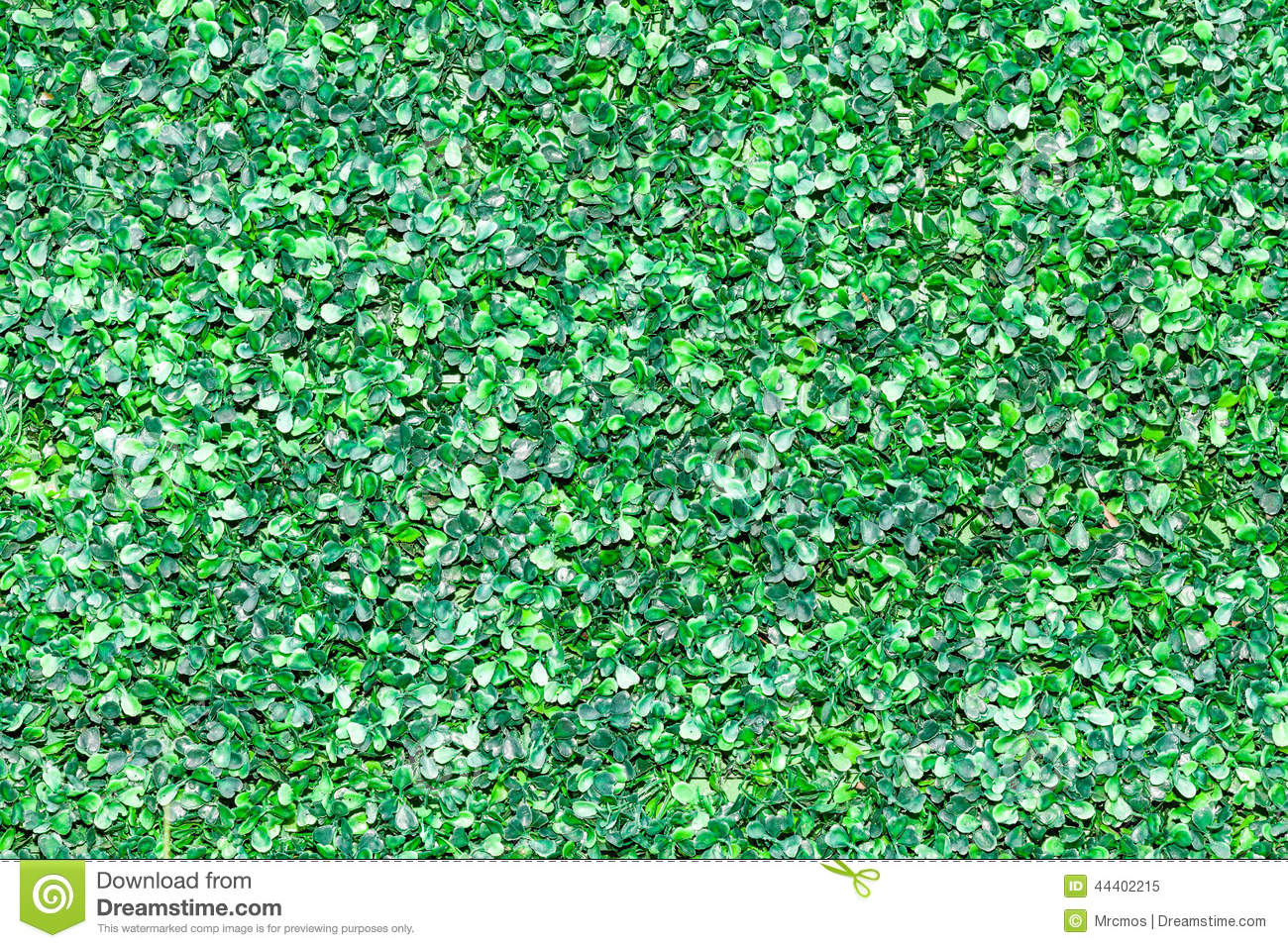 Green leave exterior wall background pattern stock photo for Exterior background