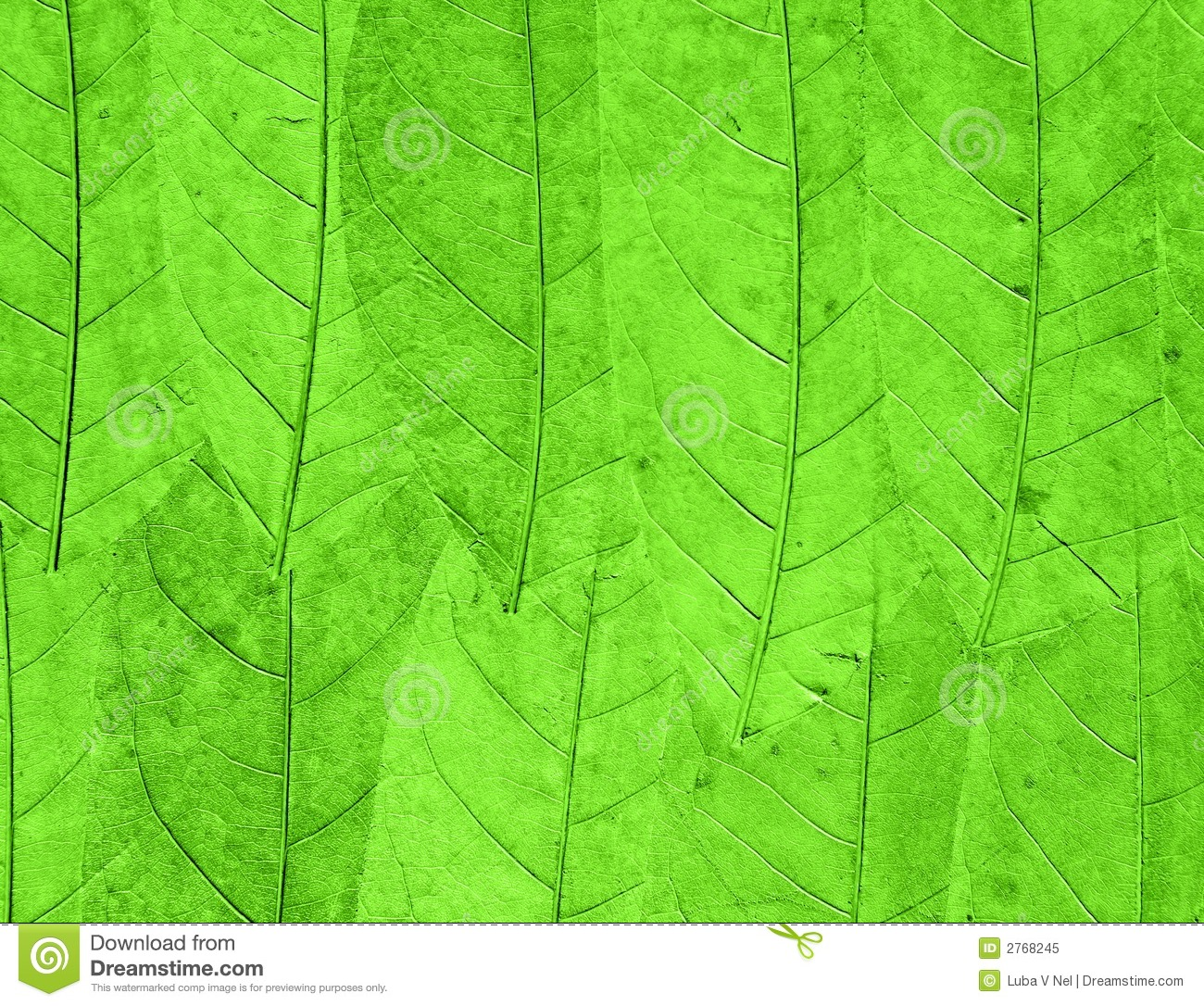 Green Leaves Background Royalty Free Stock Photo - Image: 2768245