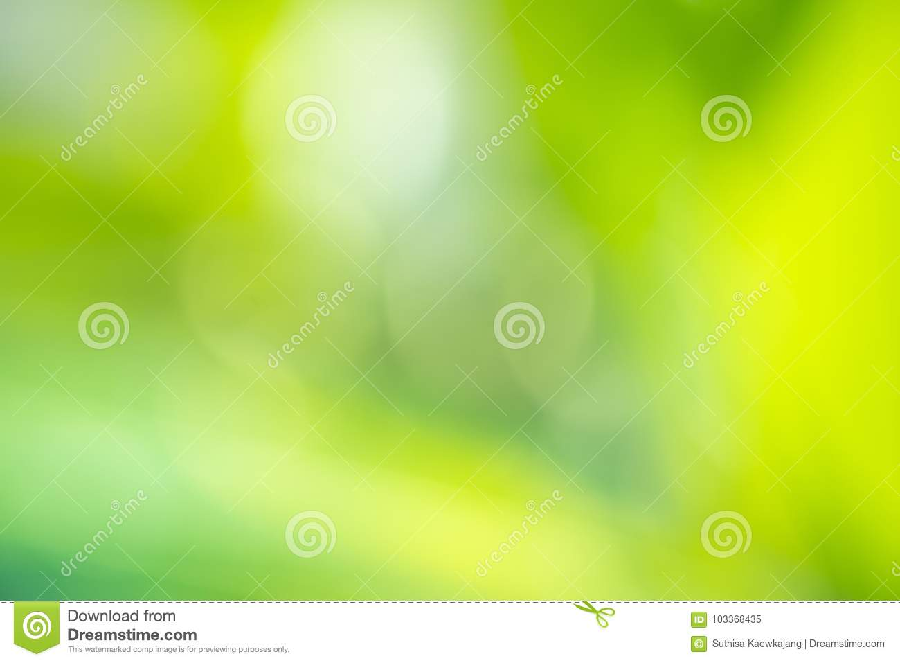 Green leaves blurred background and sunlight, spring season.