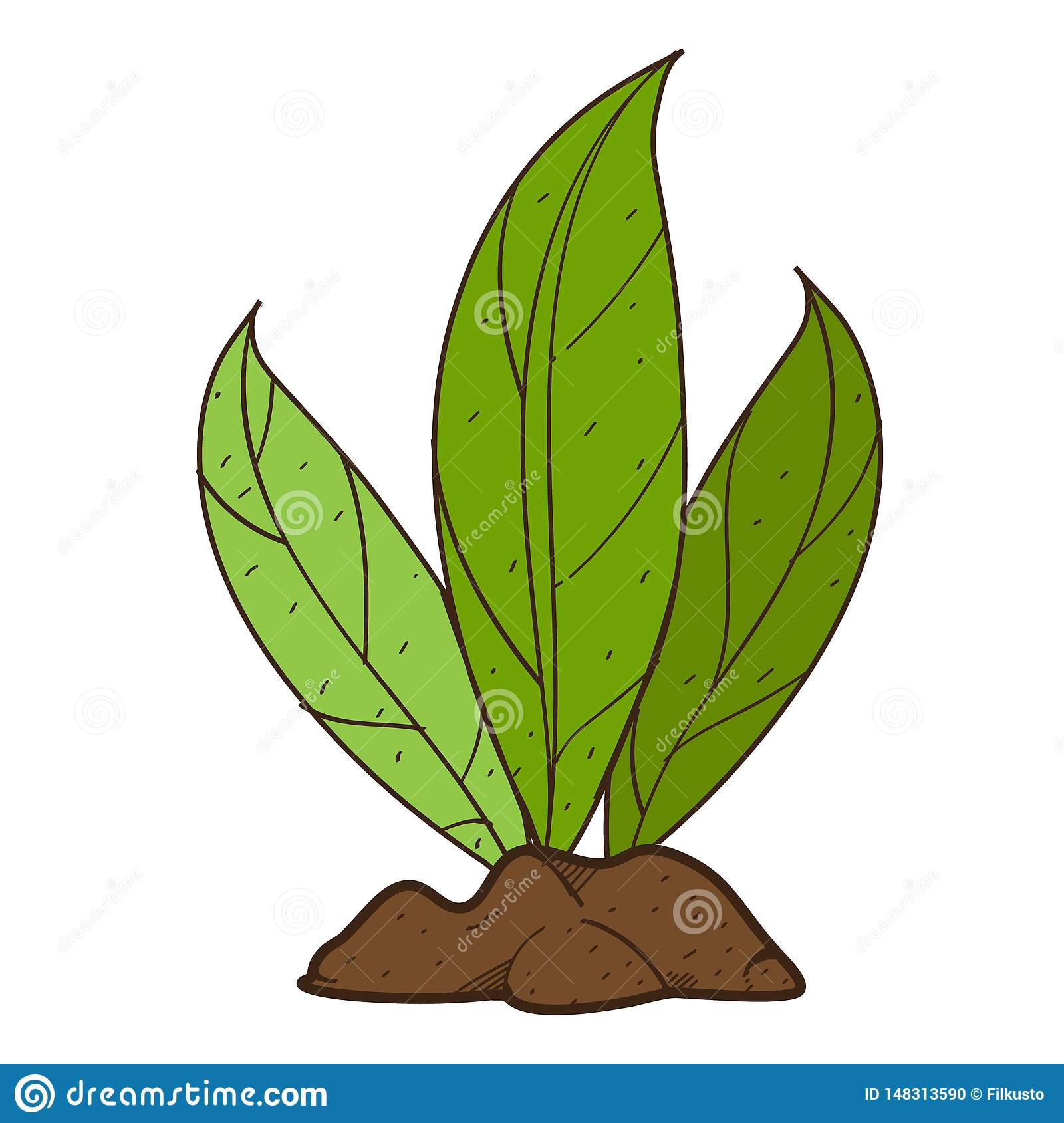 Green leaves, plant on the ground shrubs. Color illustration on farming, growing of plants