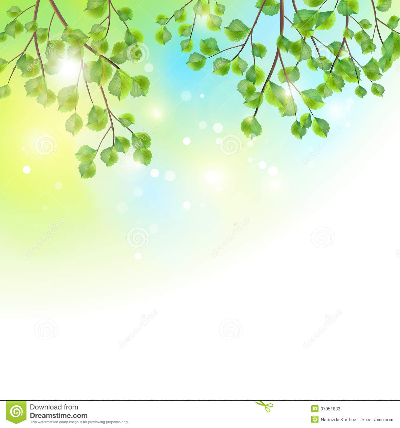 Green leaves, tree branches, vector summer background. Birch border ...