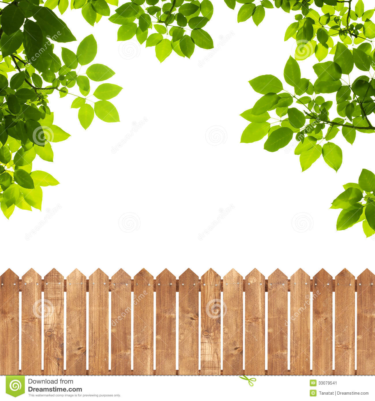 Green leaves with wood fence on white stock image