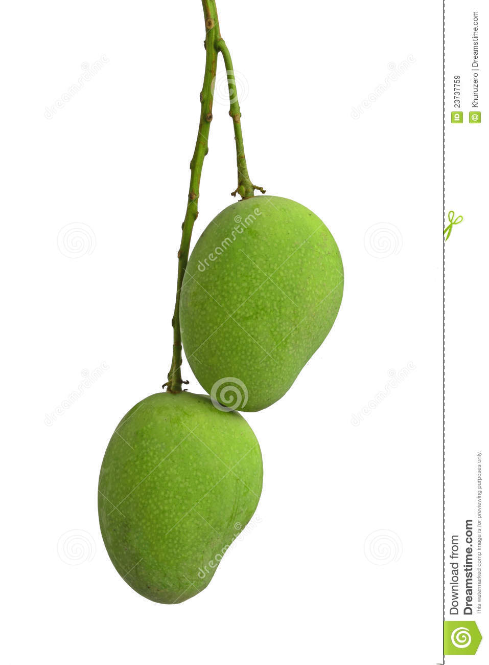 Green Mango Royalty Free Stock Images - Image: 23737759