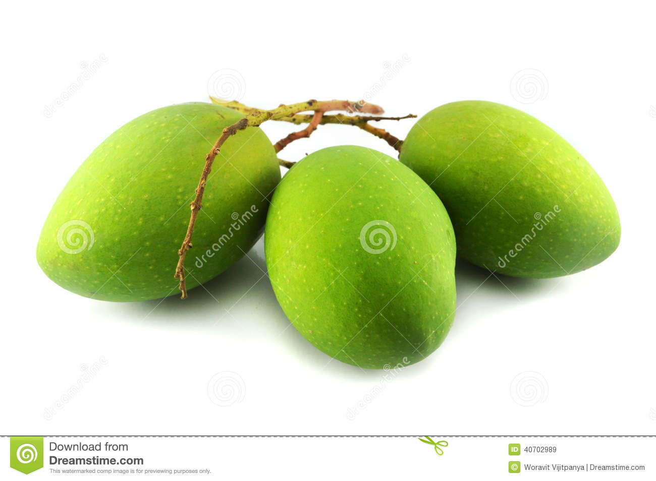 Green Mango Stock Photo - Image: 40702989