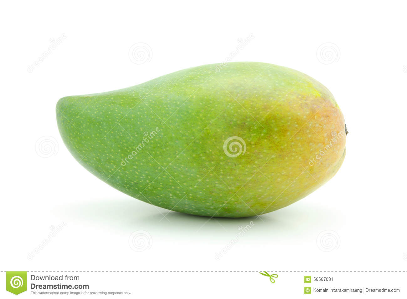 green mango stock photo image 56567081