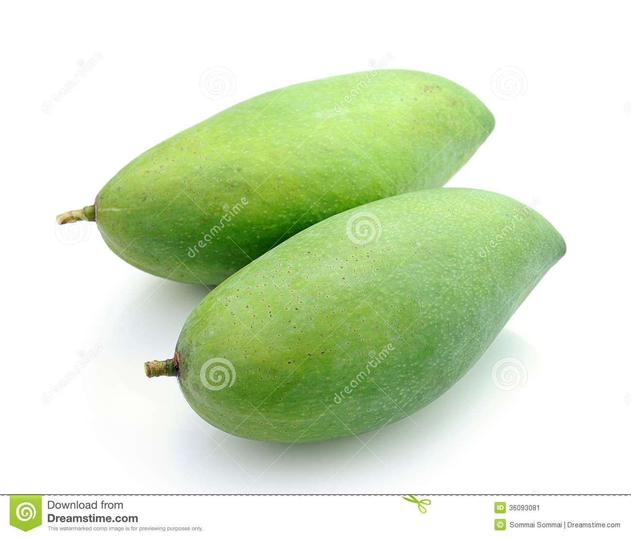 Green Mangoes On A White Background Stock Image - Image ...