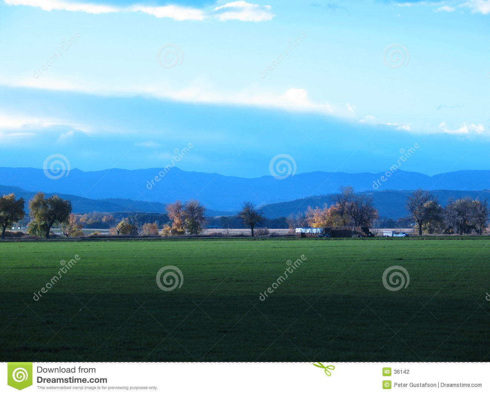 Green meadow in the fall