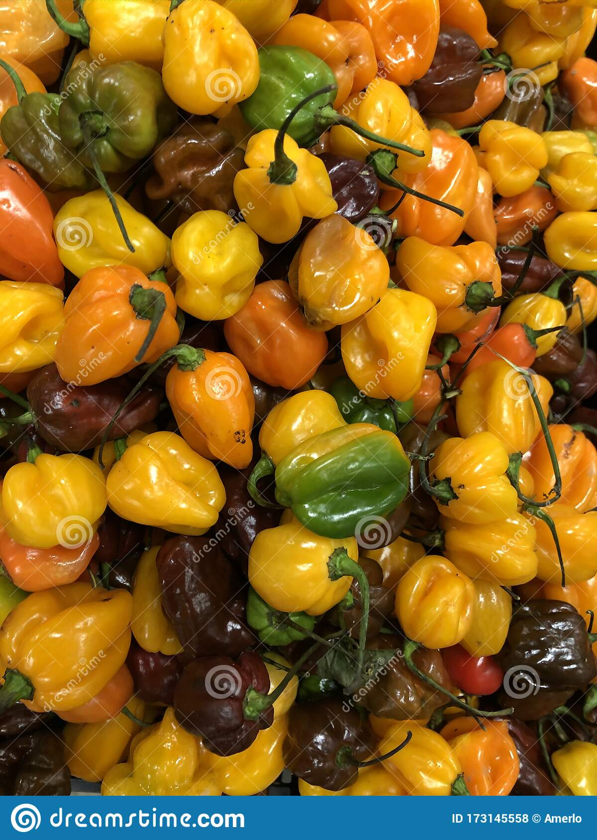 Green And Yellow Peppers: Market Fruit And Vegetables ...