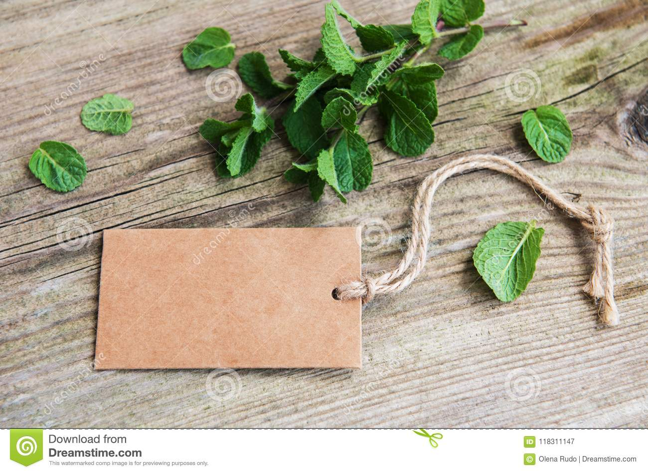 Green mint with old paper tag