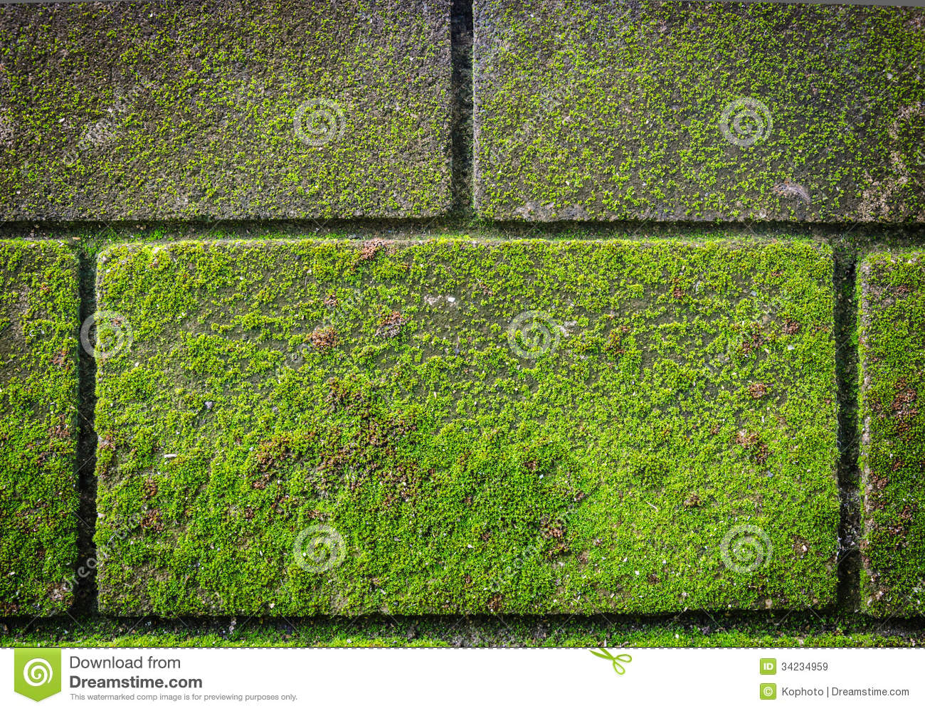 green moss on brick wall stock image image of image 34234959. Black Bedroom Furniture Sets. Home Design Ideas