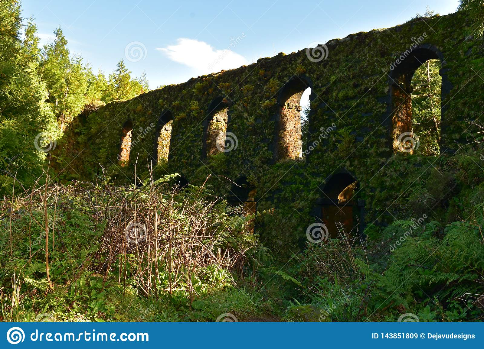 Green Moss Covered Aqueduct in Sao Miguel