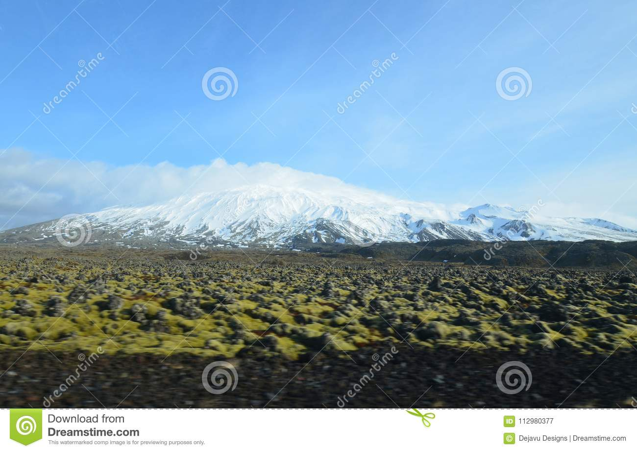 Green Moss Covered Lava Field In Front of Glacier