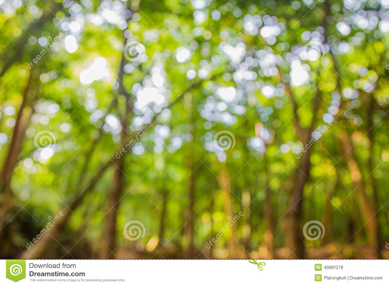 Green Natural Background Of Out Of Focus Forest Or Bokeh ...