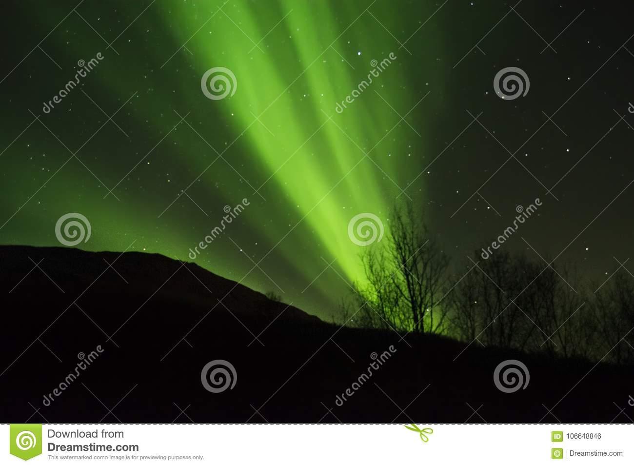 GREEN NORTHERN LIGHTS IN THE ARCTIC SKY