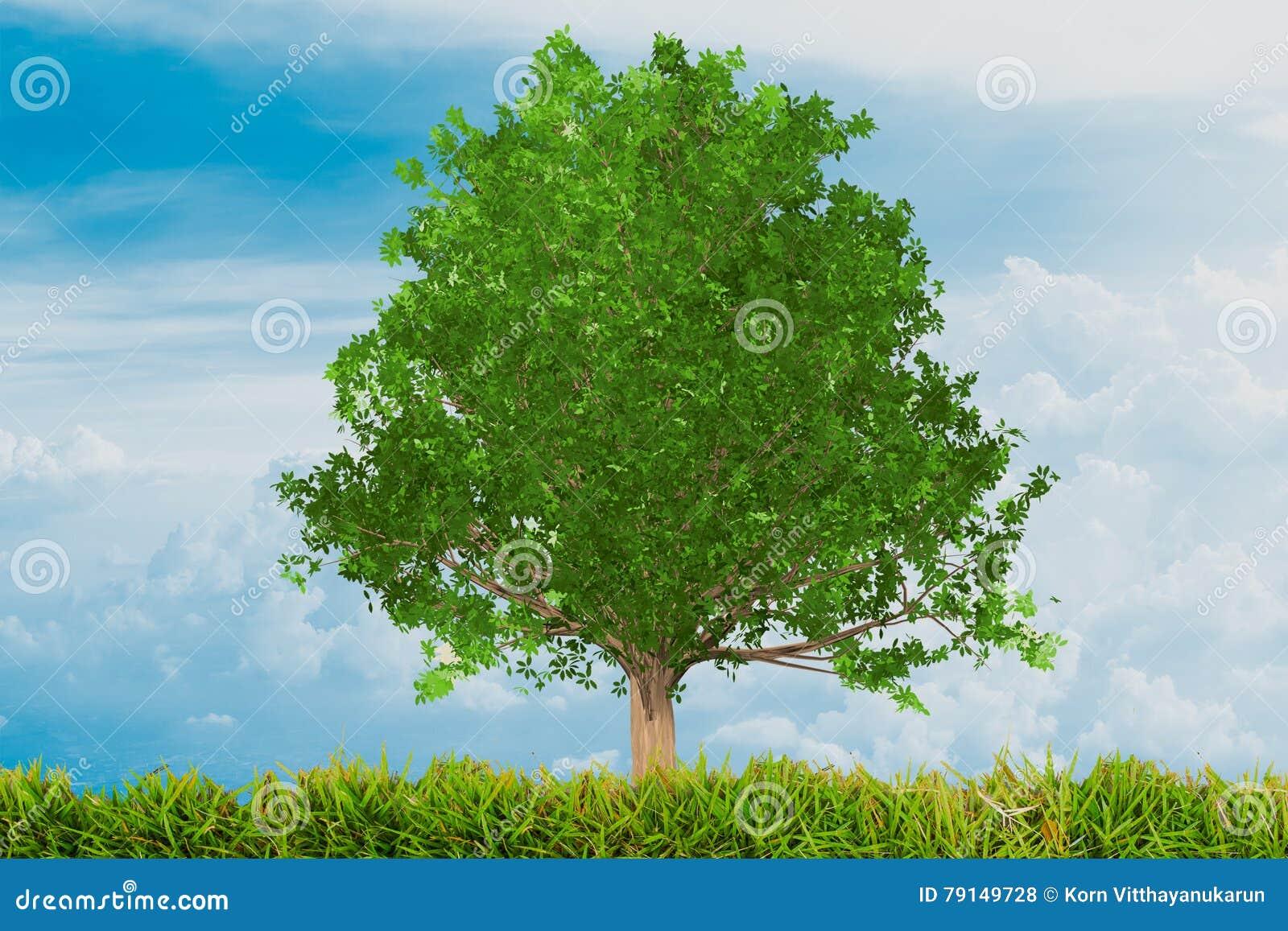 oak forest jewish single women Oak forest's best 100% free online dating site meet loads of available single women in oak forest with mingle2's oak forest dating services find a girlfriend or lover in oak forest, or.