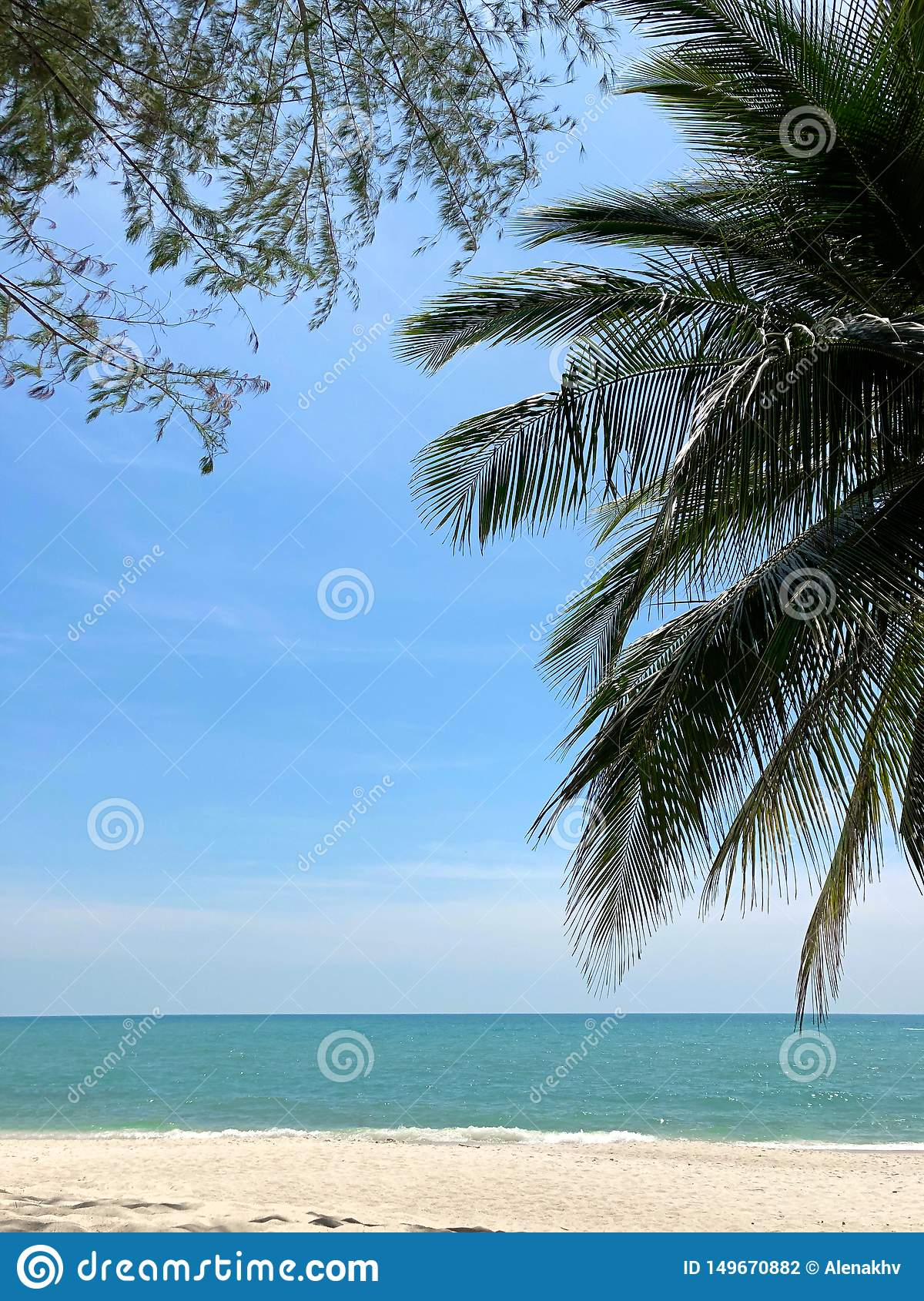 Palm branches and branches of a tropical tree against a blue sky, turquoise sea and white sand