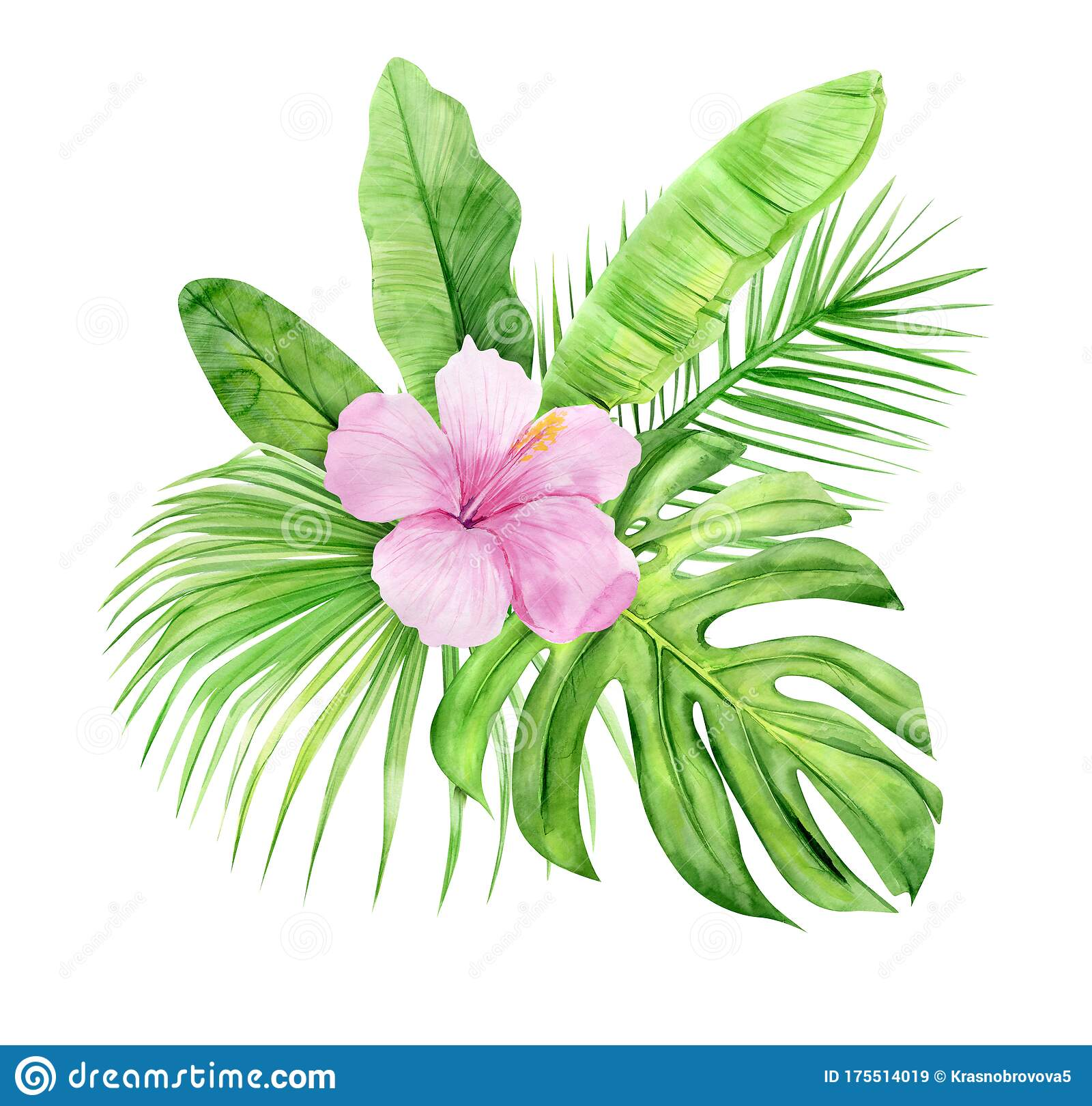 Green Palm Leaves And Flowers Bouquet Tropical Plant Hand Painted Watercolor Illustration Isolated On White Background Stock Illustration Illustration Of Leaf Green 175514019 Urijk printed tropical leaves flower beach towel round microfiber beach towels for living room tropical plant leaves tapestry wall hanging polyester bohemia flowers print tapestry beach. dreamstime com