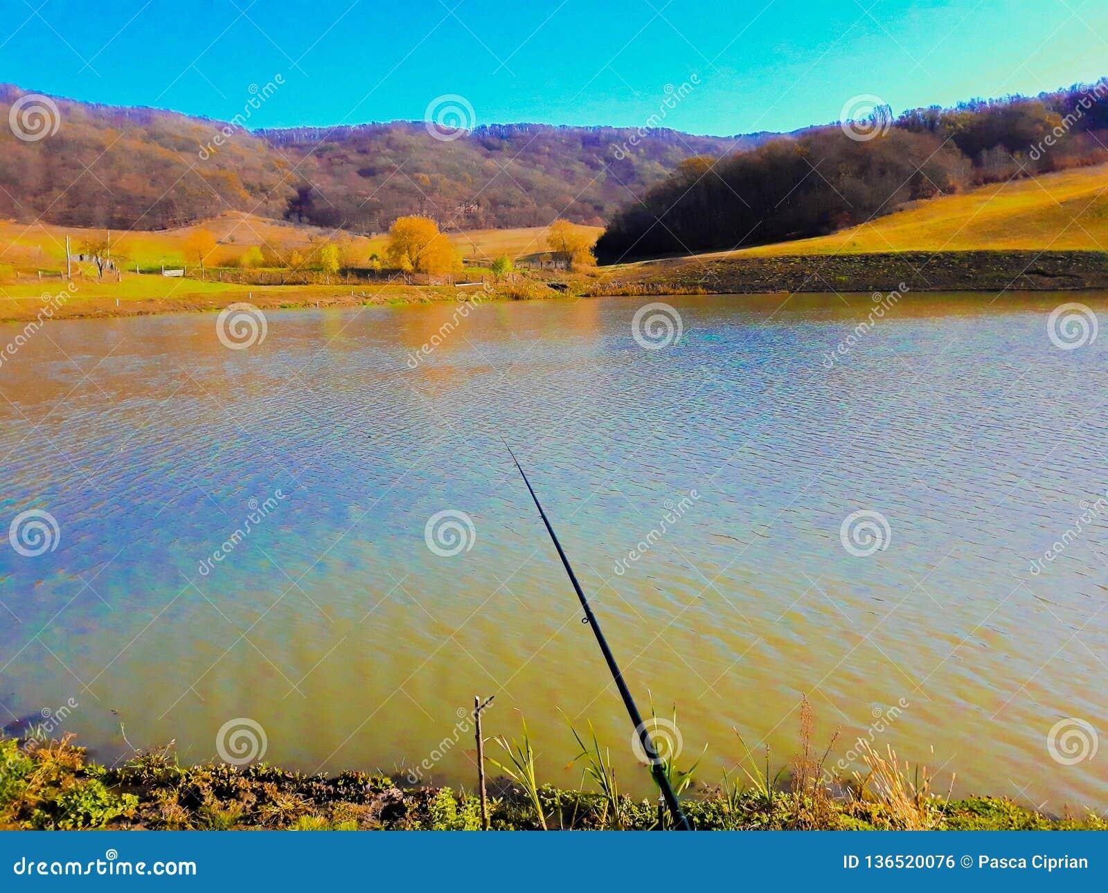 The nature stock photo  Image of unusual, lake, apus - 136520076