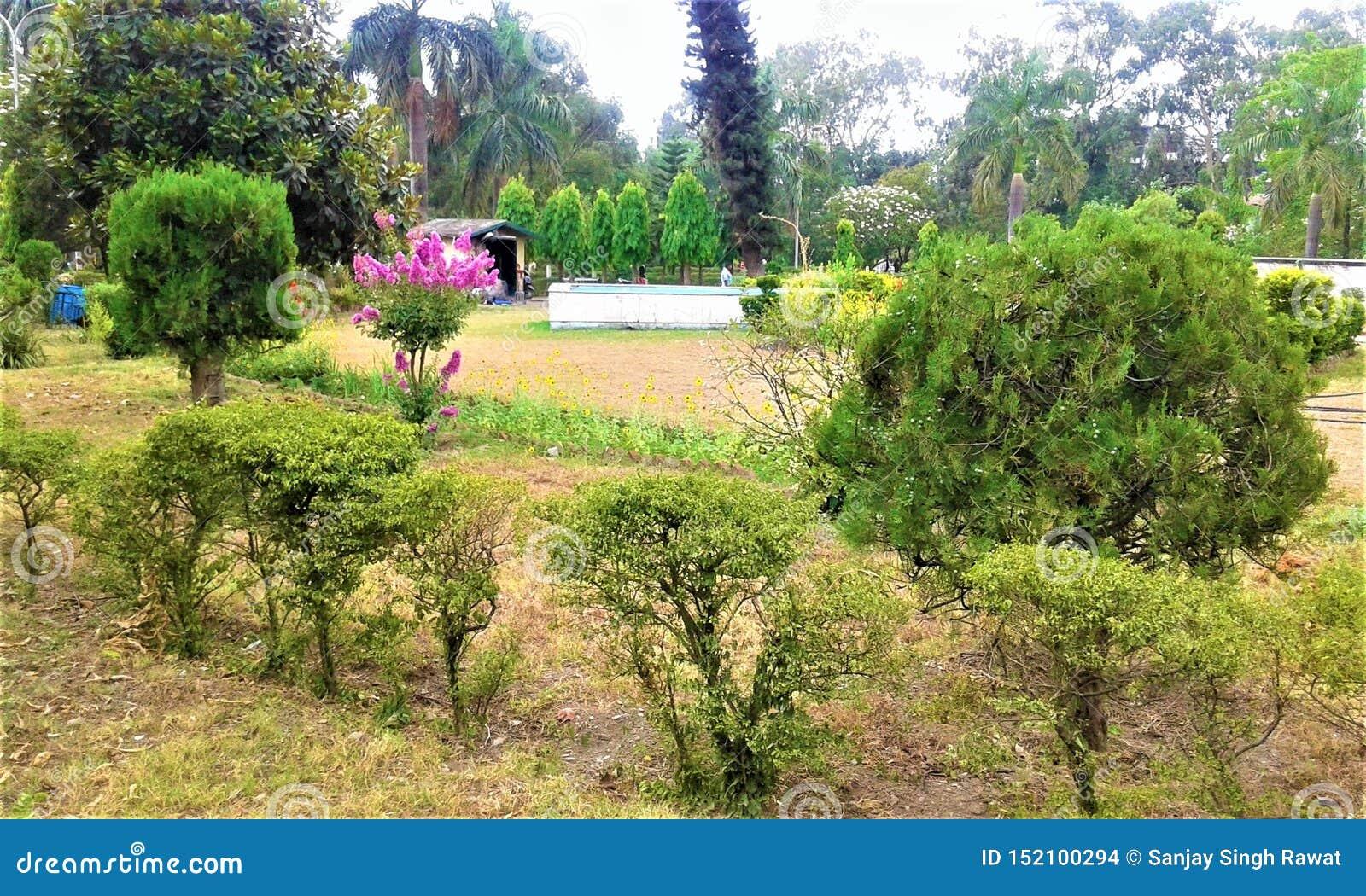 Green Park bonito na Índia