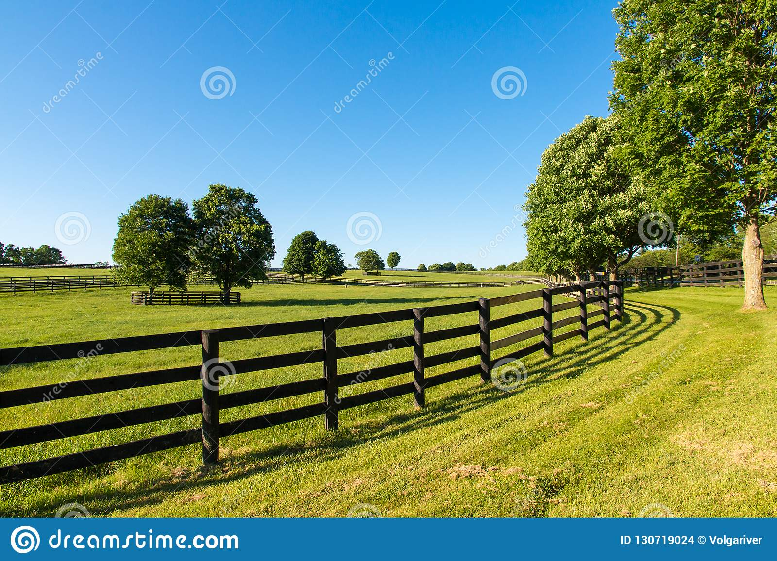 Green Pastures Of Horse Farms Country Summer Landscape Stock Photo Image Of Beautiful Lawn 130719024