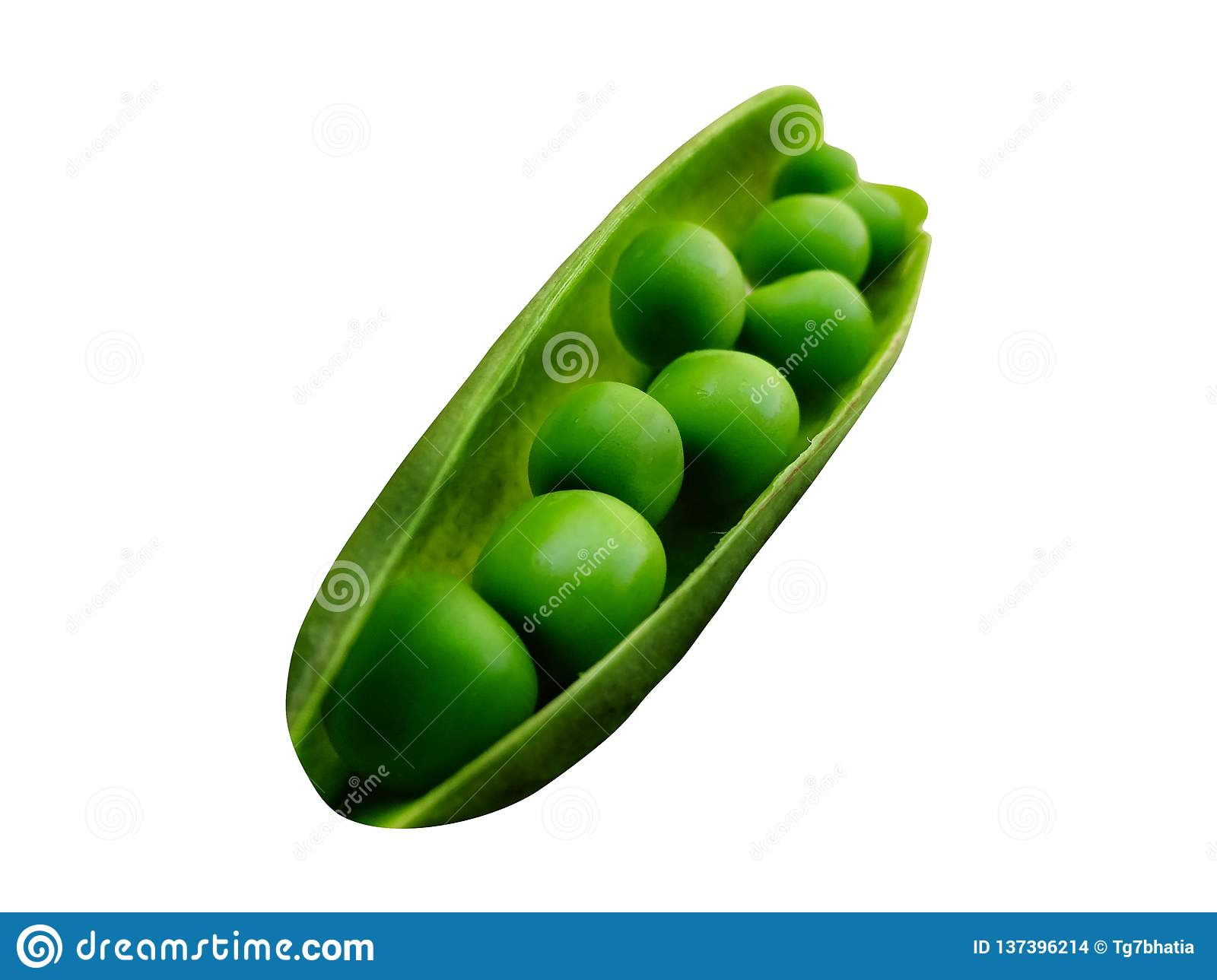 Green Peas isolated with PNG format.