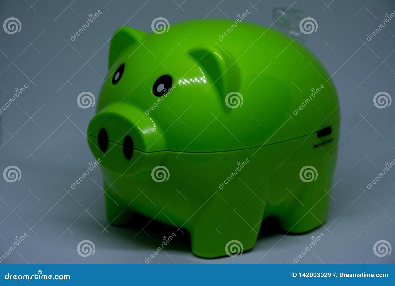 Green piggy musical box