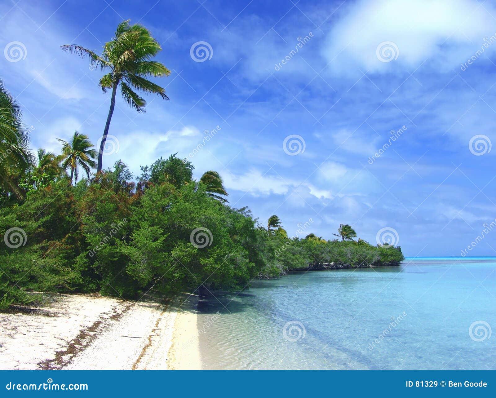 Green plażowa