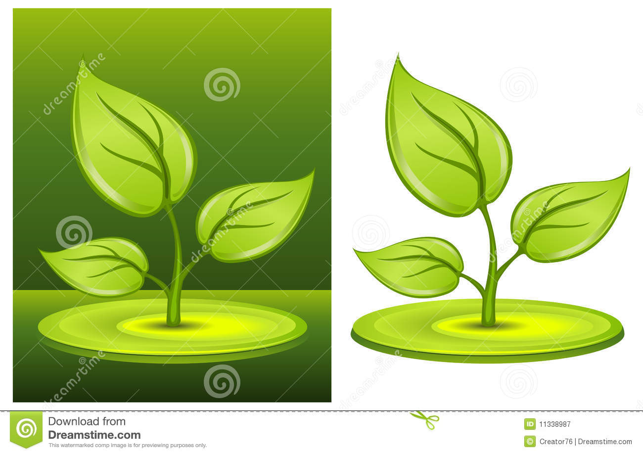 Green plant royalty free stock image for Green plants for garden