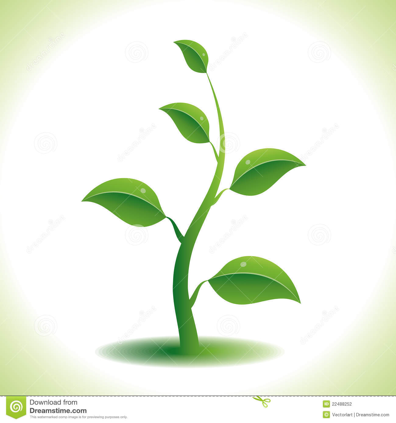 Green Plant Stock Photography - Image: 22488252