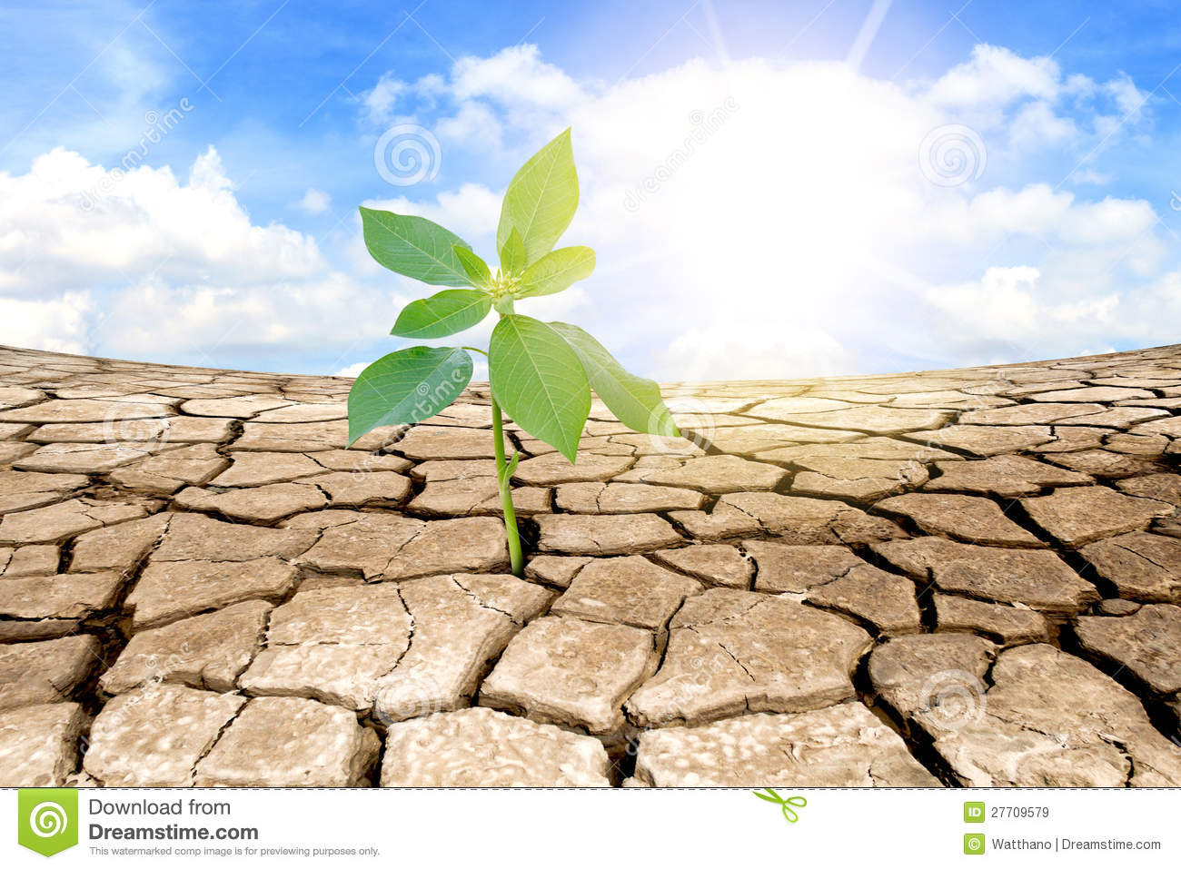 Soil Bag Clipart Green Plant On Backgro...