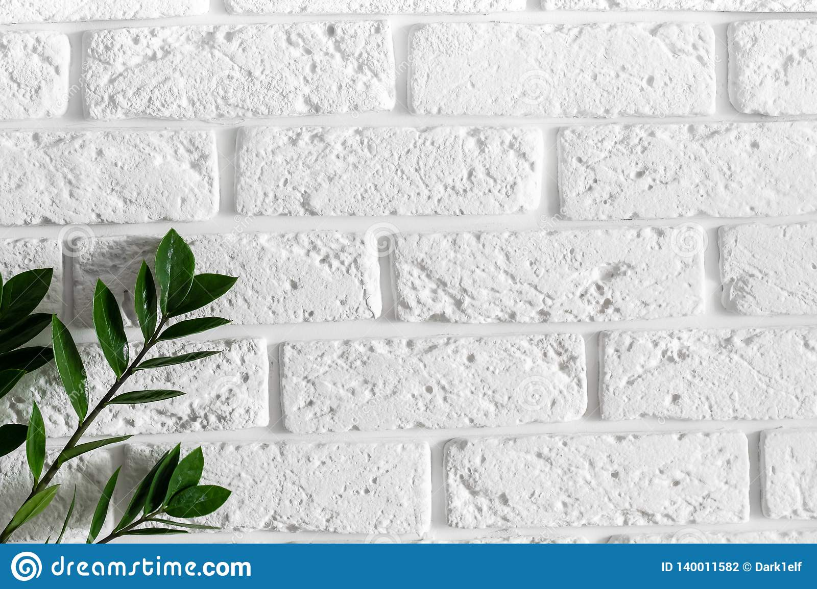 Green Plant Branch On White Brick Wall Modern Home Interior Design Background Stock Photo Image Of Color Interior 140011582