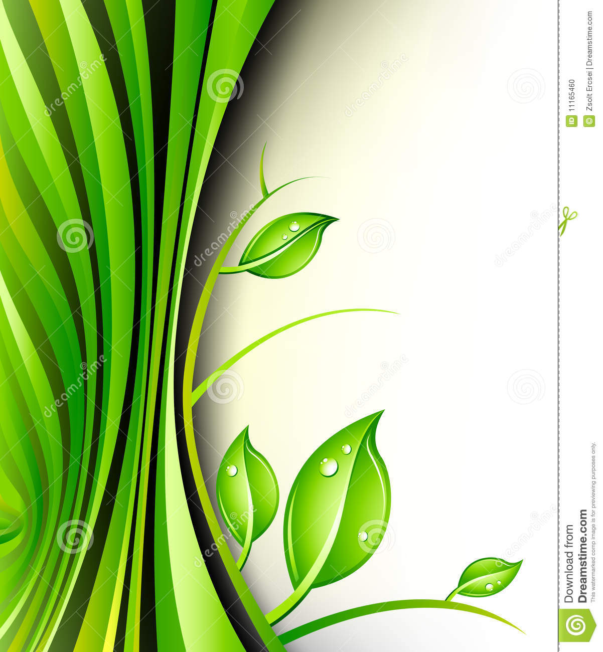 Green Plant Design Stock Photo Image 11165460