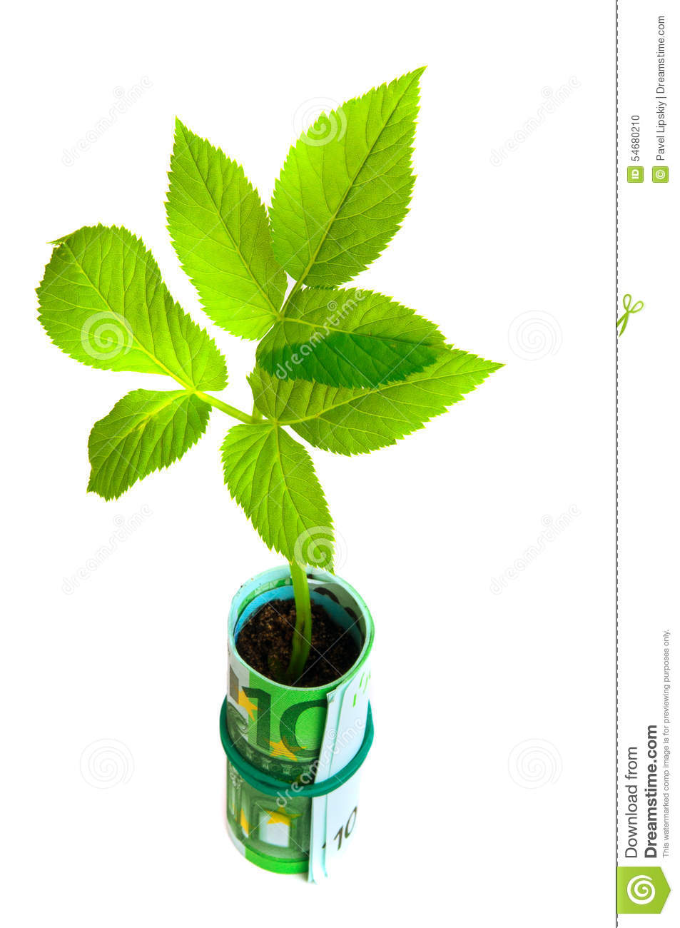 go green grow green O tomatoes, instead of onions, bring tears to your eyes are you uneasy about all those chemicals in your veggies do you ache to bring a green relief from the.