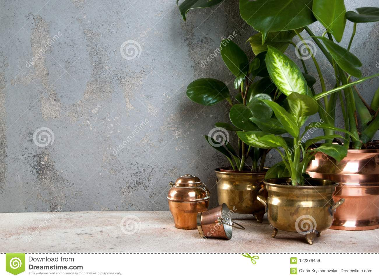 Green plants in brass and copper flower pots & Green Plants In Brass And Copper Flower Pots Stock Image - Image of ...