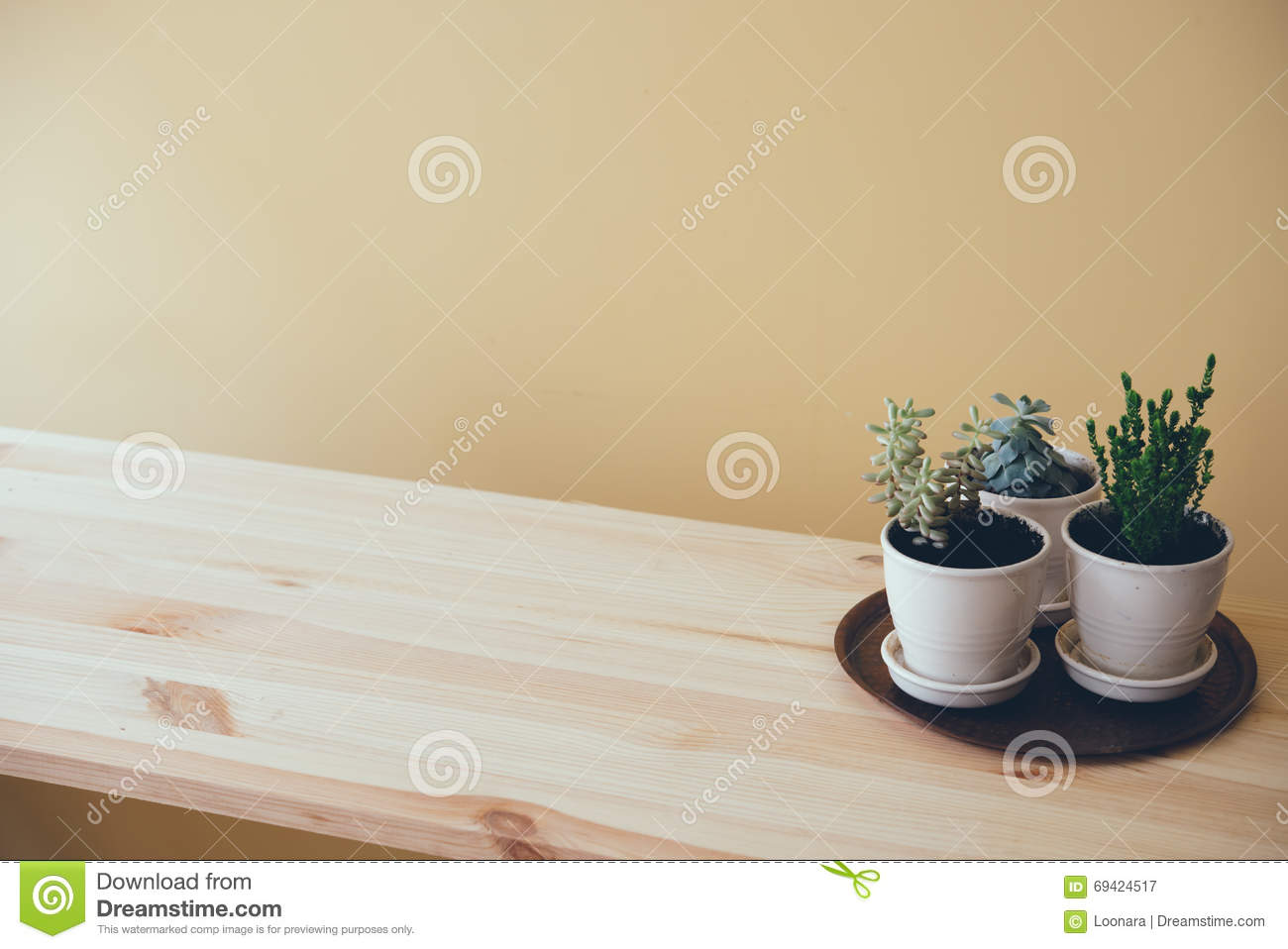 Green Plants On A Wooden Table Stock Image - Image of beige ...