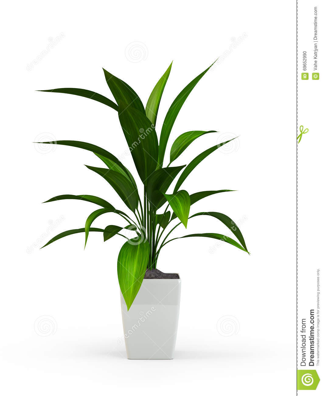 Green Potted Plant Stock Image 69910831