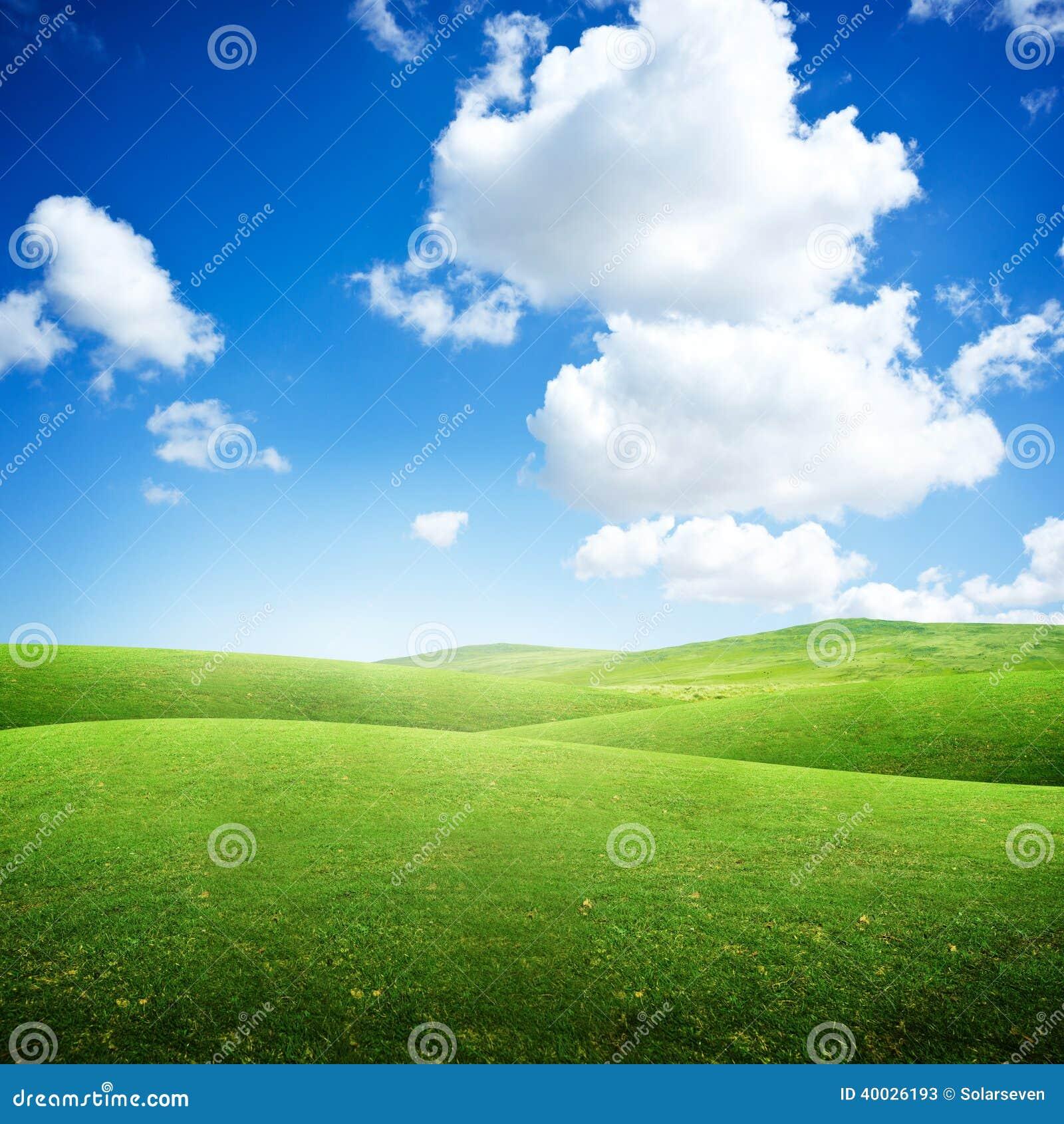 Green Rolling Fields