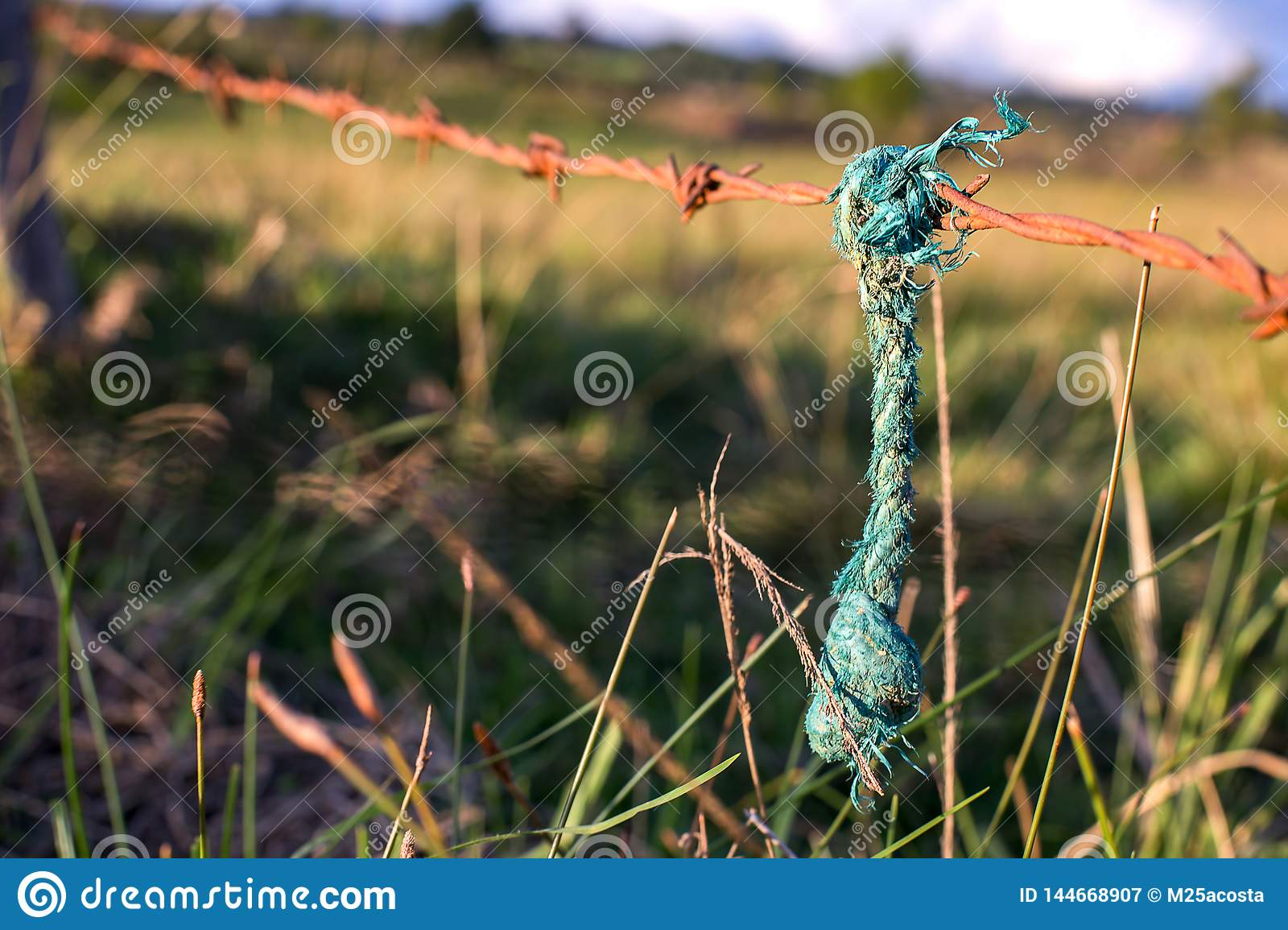 Green rope hanging from a rusted barb wired