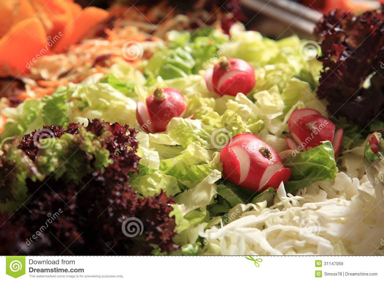 close up of a fresh green salad with lettuce mr no pr no 0 292 0