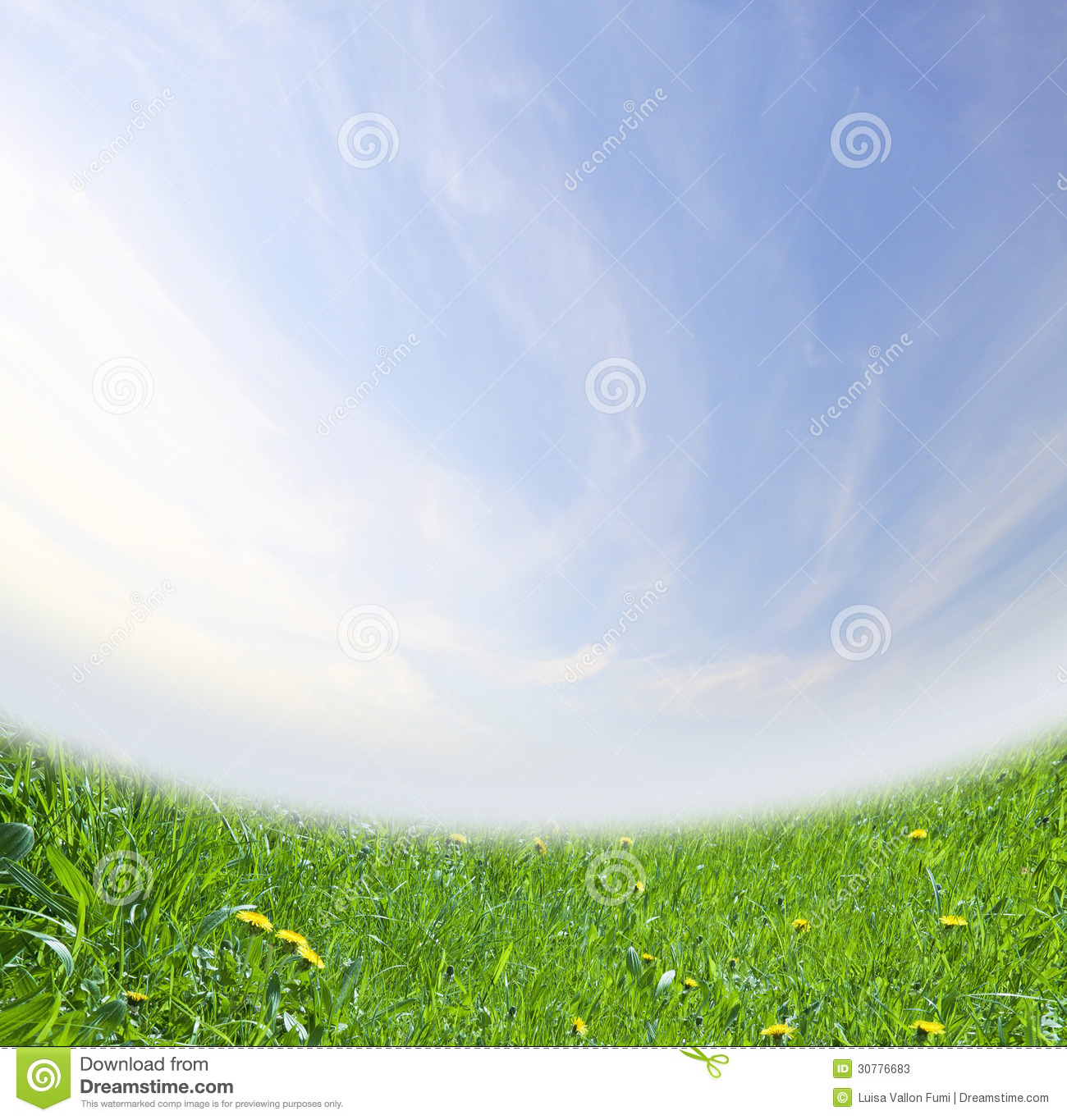 green spring background - photo #26